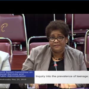 27th Public Metting – JSC Social Services & Public Administration – May 29, 2019